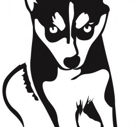Pomsky Owners Association Logo