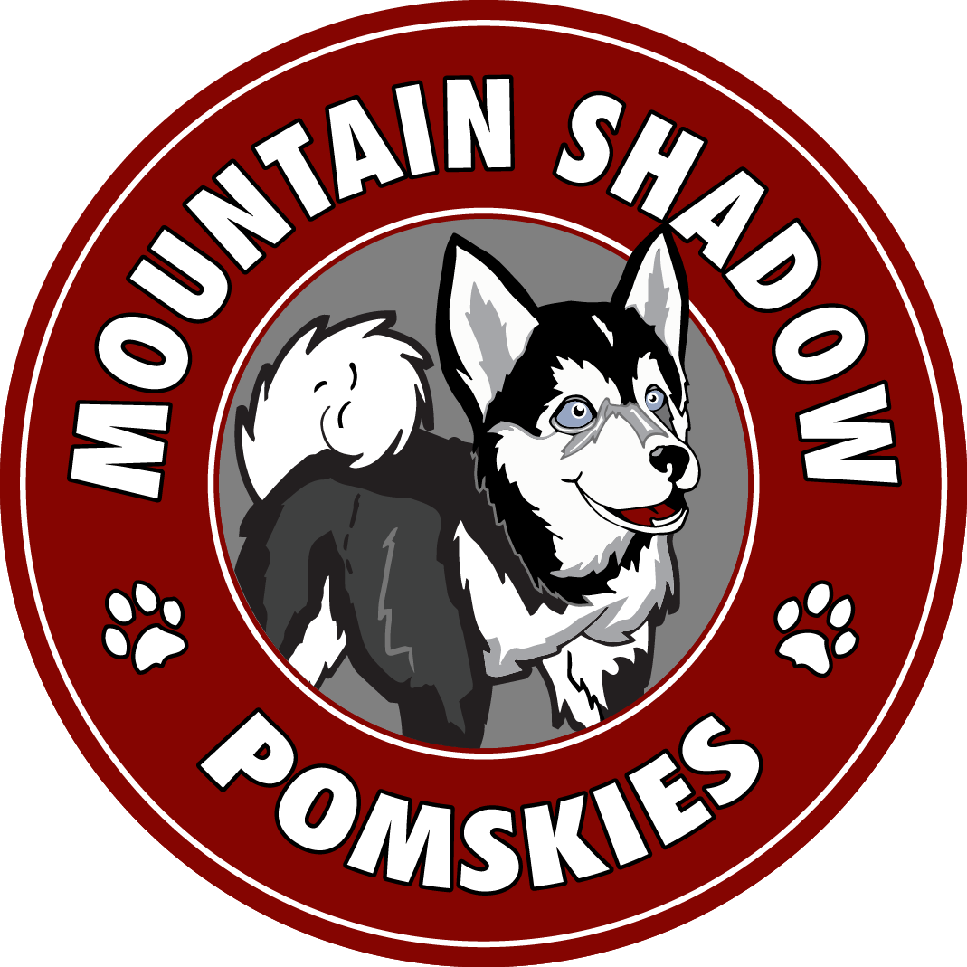 Mountain Shadow Logo