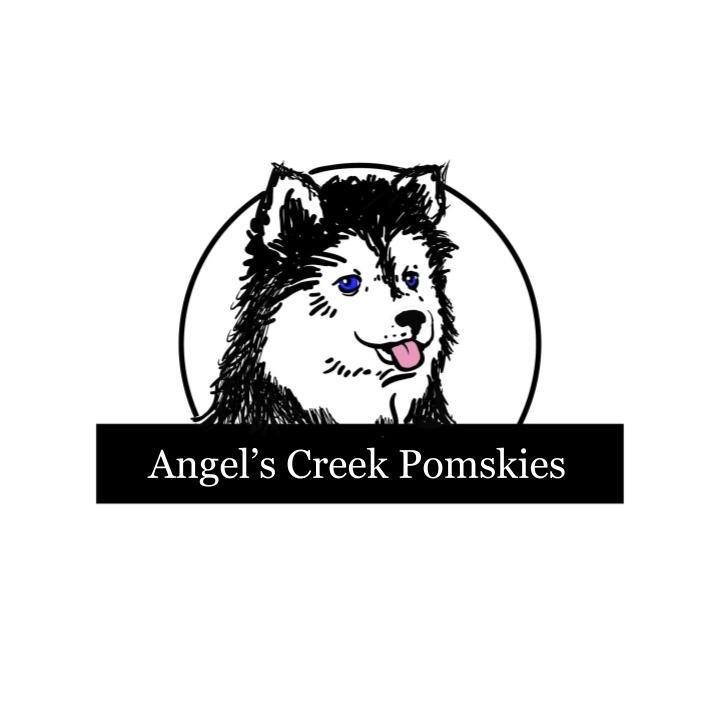 Pomsky Puppies For Sale in IL
